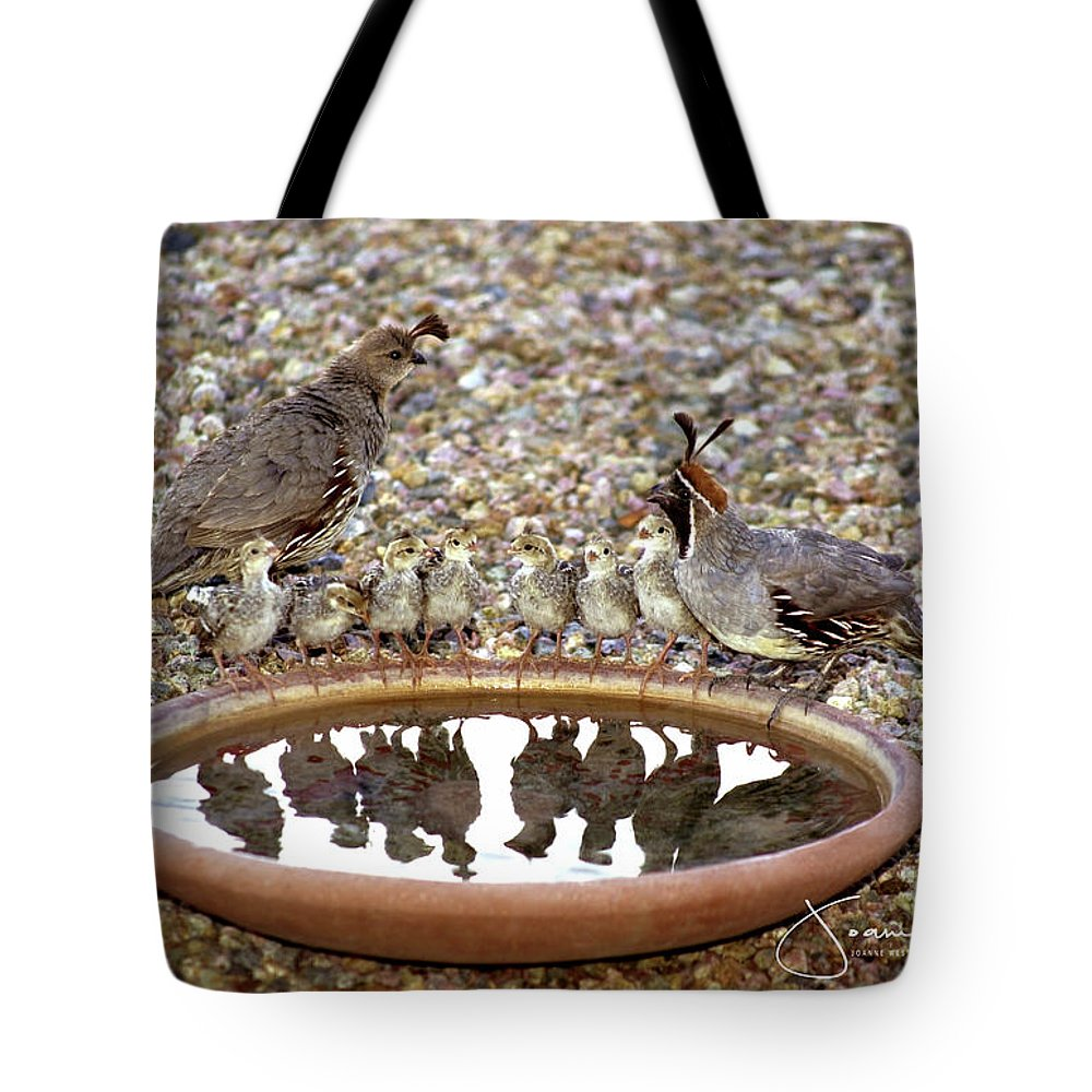 Quail Tote Bag featuring the photograph Quail Family Gathering Az by Joanne West