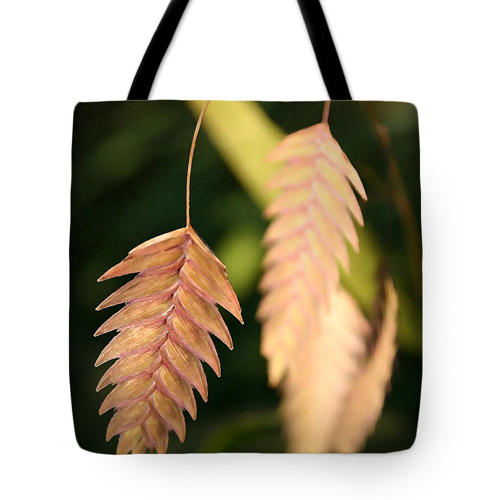 Landscape Tote Bag featuring the photograph Quaking Grass by Mary Haber