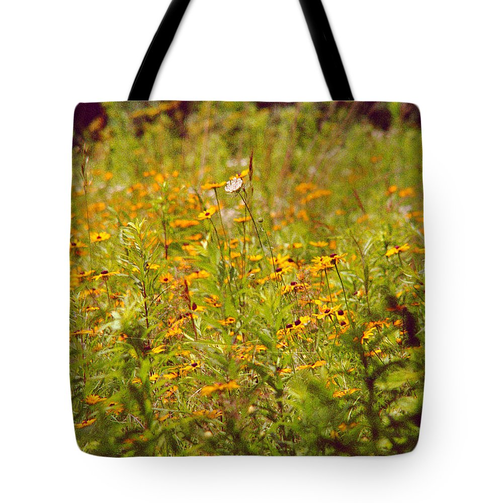 Flower Tote Bag featuring the photograph Queen Ann by Randy Oberg