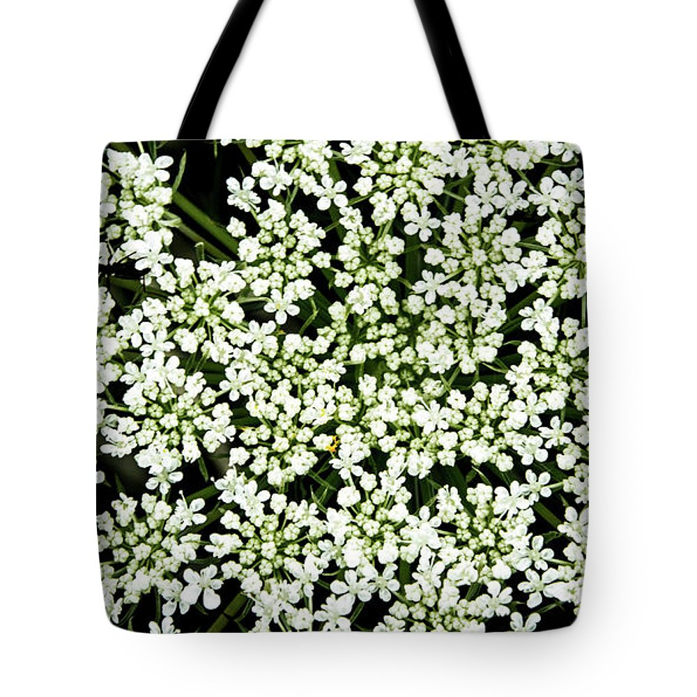 Queen Anne's Lace Tote Bag featuring the photograph Queen Anne's Lace Patterns by Ira Marcus