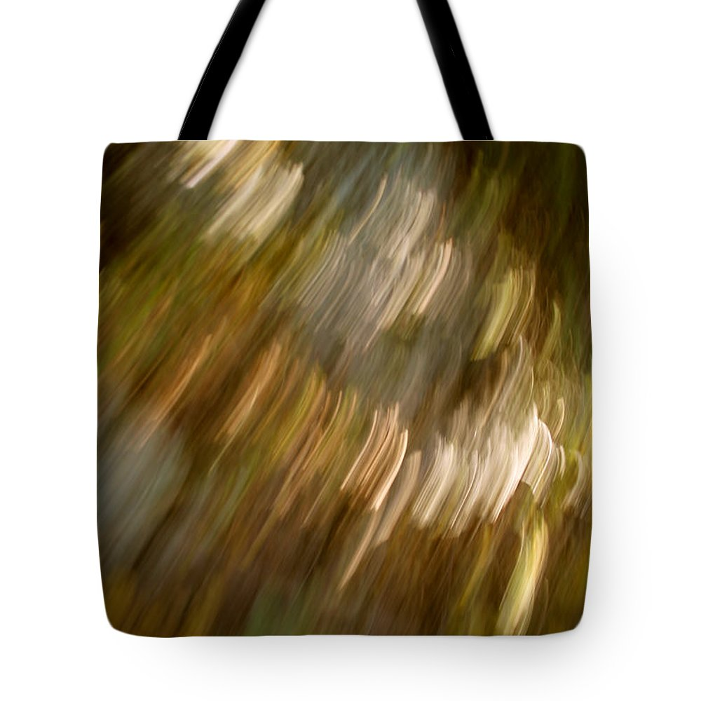 Mount Rushmore Tote Bag featuring the photograph Quick Ride by Mike Oistad