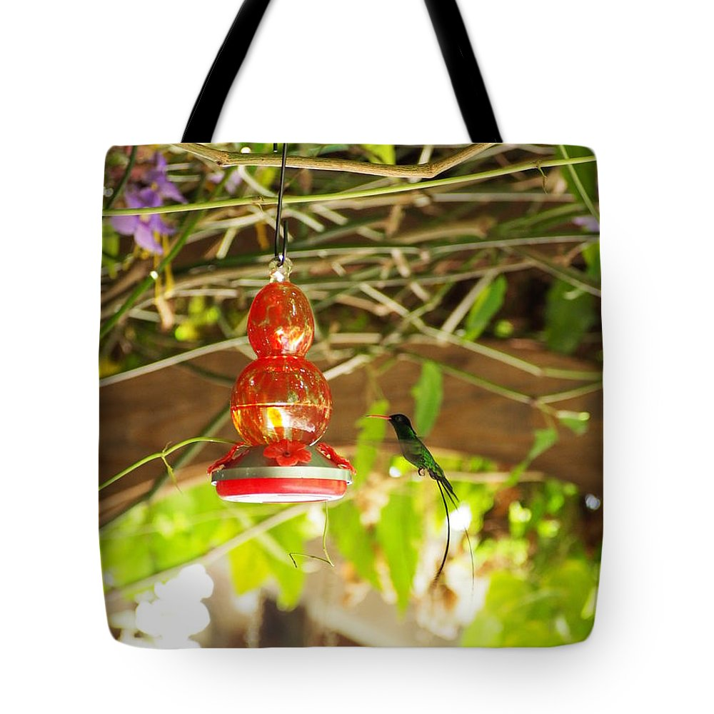 Hummingbird Tote Bag featuring the photograph Quick Snack by Jessica Myscofski