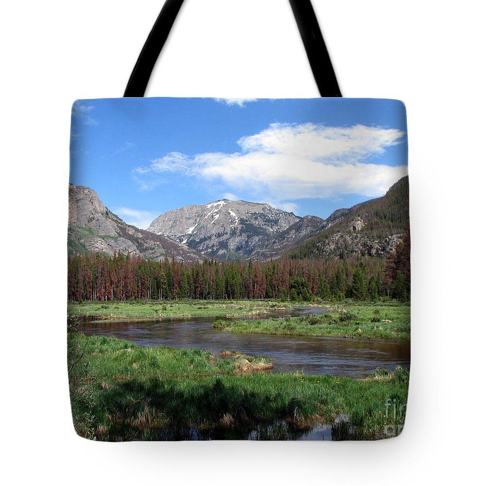 Nature Tote Bag featuring the photograph Quiet by Amanda Barcon