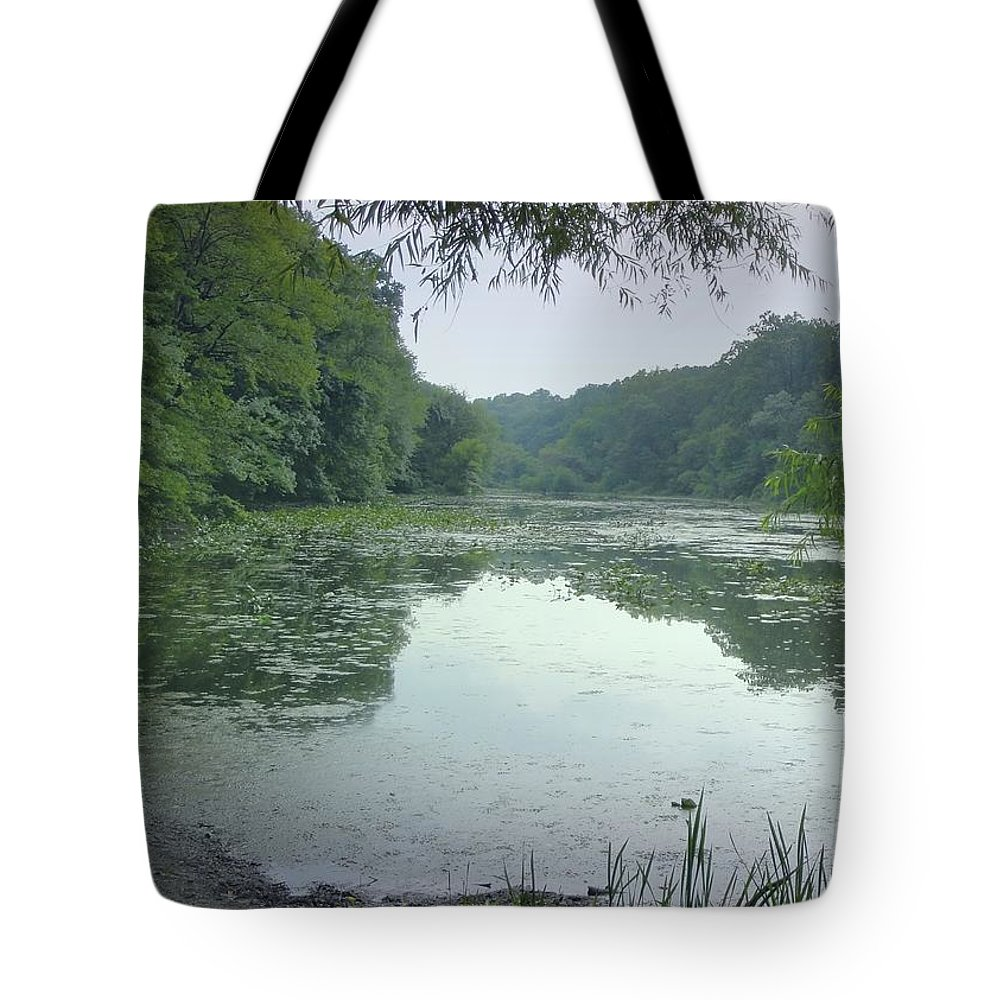 Lake Surprise Tote Bag featuring the photograph Quiet Reflections by Jane Alexander