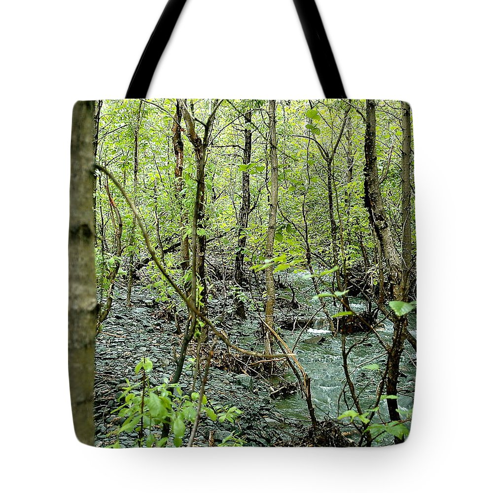 Landscape Tote Bag featuring the photograph Quiet Stream by Mark Lemon