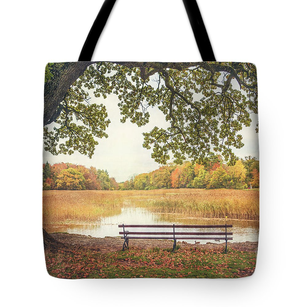 Kremsdorf Tote Bag featuring the photograph Quiet Time by Evelina Kremsdorf