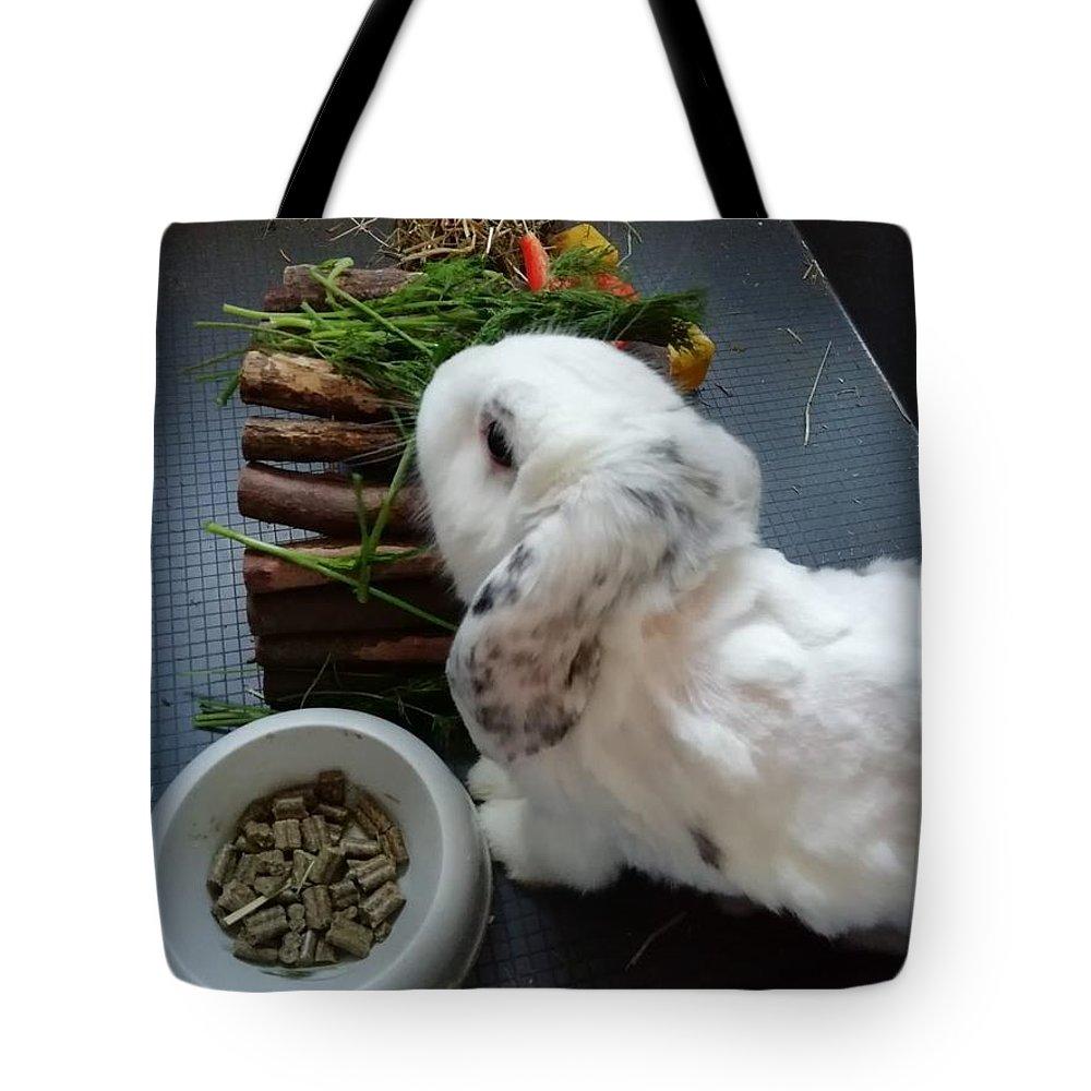 Tote Bag featuring the photograph Rabbit by Daniela Buciu