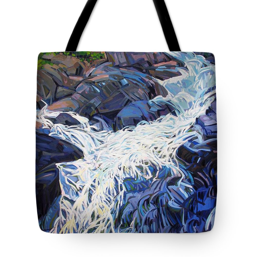 Ragged Tote Bag featuring the painting Ragging Waters by Phil Chadwick
