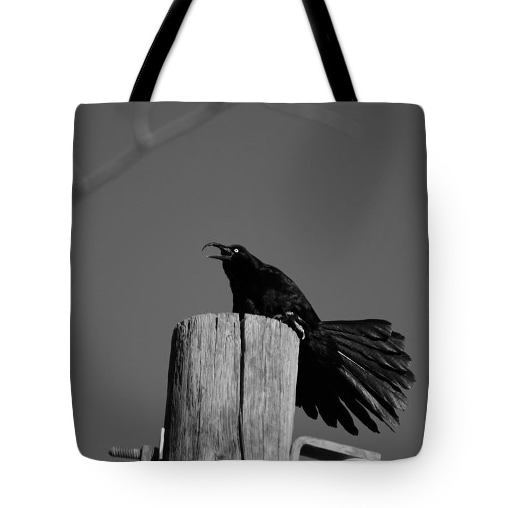 Black And White Photograph Tote Bag featuring the photograph Raging Crow by Colleen Cornelius