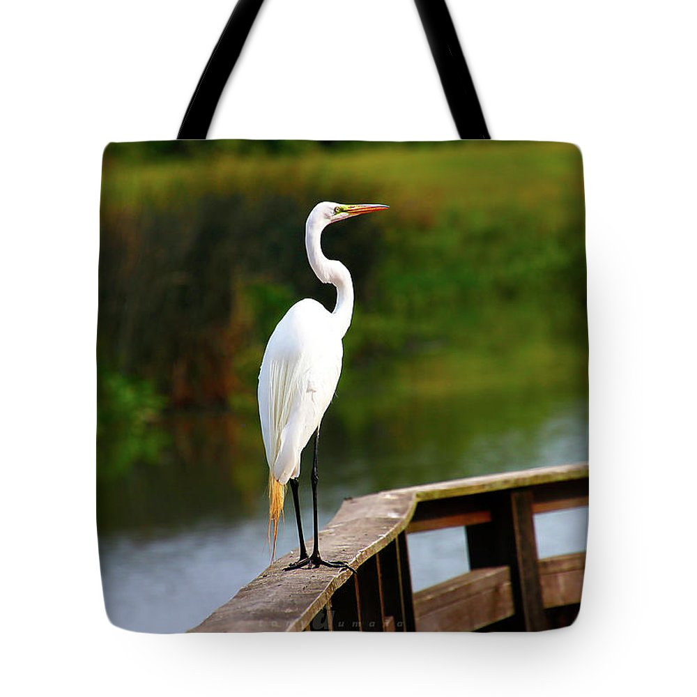 Tote Bag featuring the photograph Rail Walker by Tony Umana