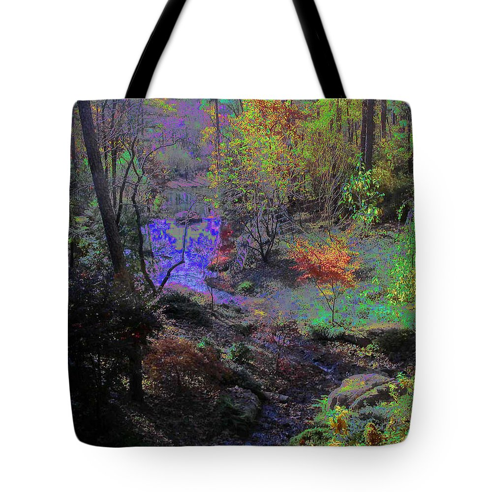 Woods Tote Bag featuring the photograph Rainbow Fairies Sweep Across The Landscape by Anne Cameron Cutri