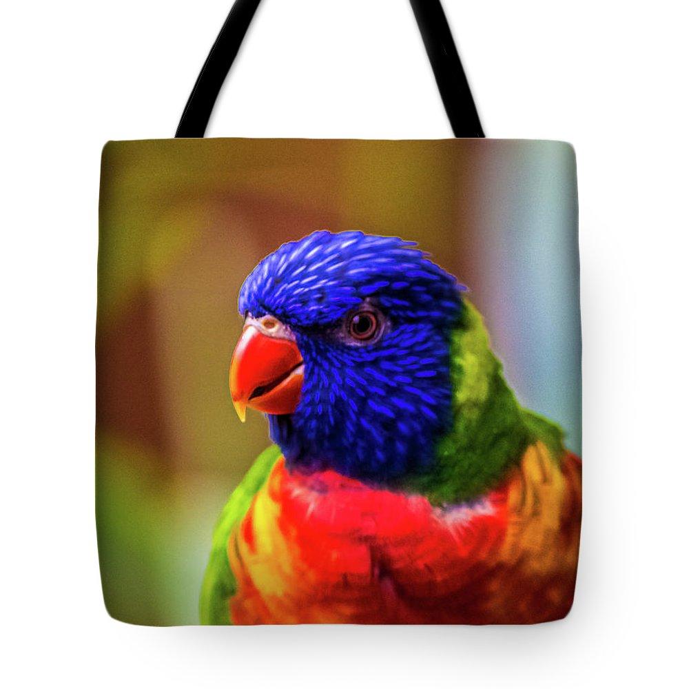 Rainbow Lorikeet Tote Bag featuring the photograph Rainbow Lorikeet by Martin Newman