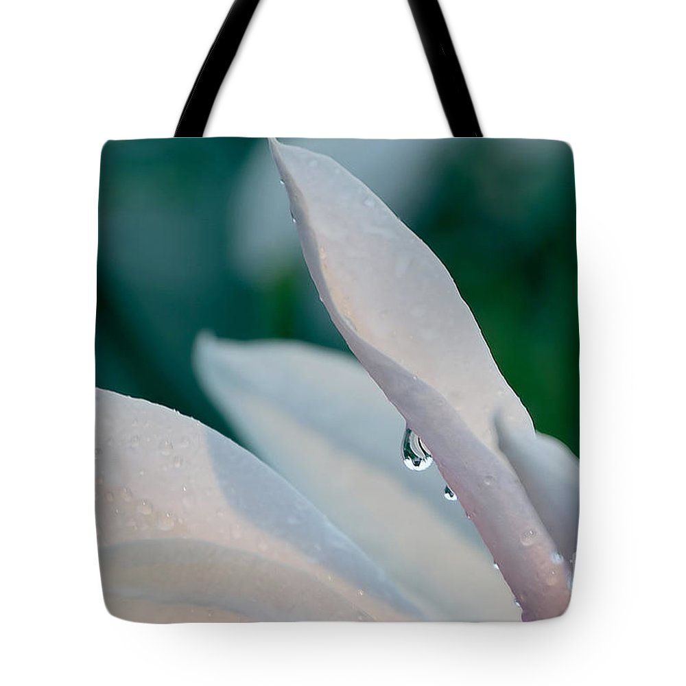 Rain Tote Bag featuring the photograph Raindrop On A Magnolia Petal by Peter McHallam