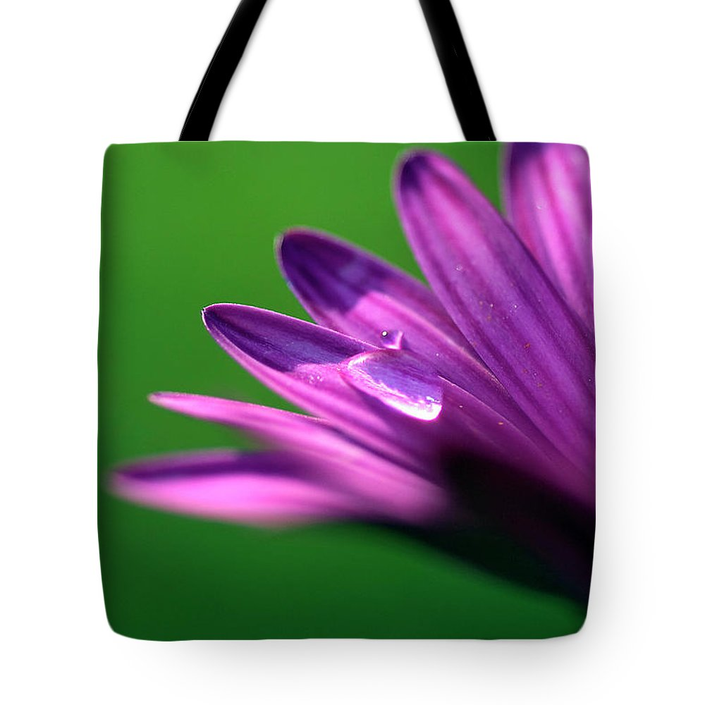 Purple Tote Bag featuring the photograph Raindrop On Purple Petal by Jonathon Cuff