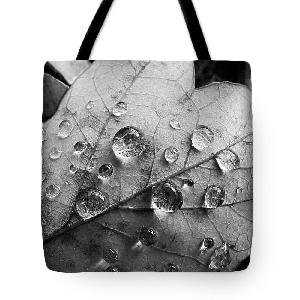 Drops Tote Bag featuring the photograph Raindrops by Daniel Csoka