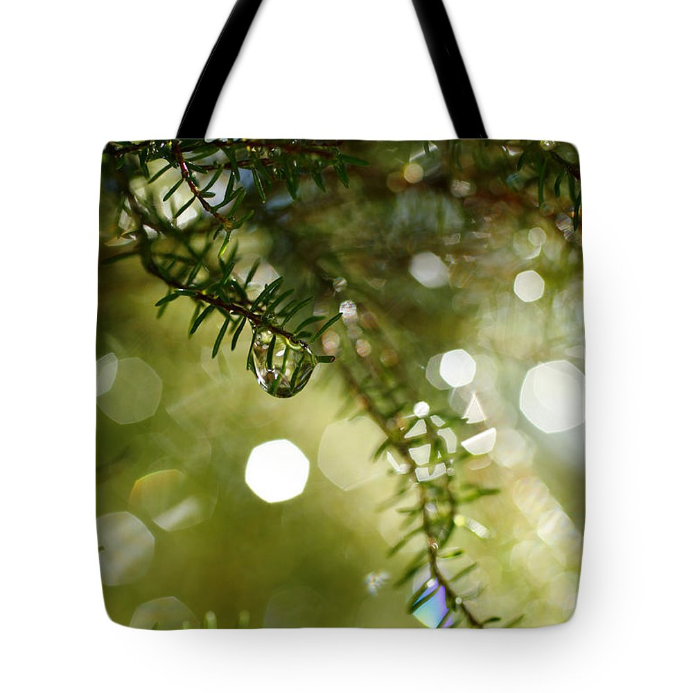 Dew Tote Bag featuring the photograph Raindrops by Gaspar Avila