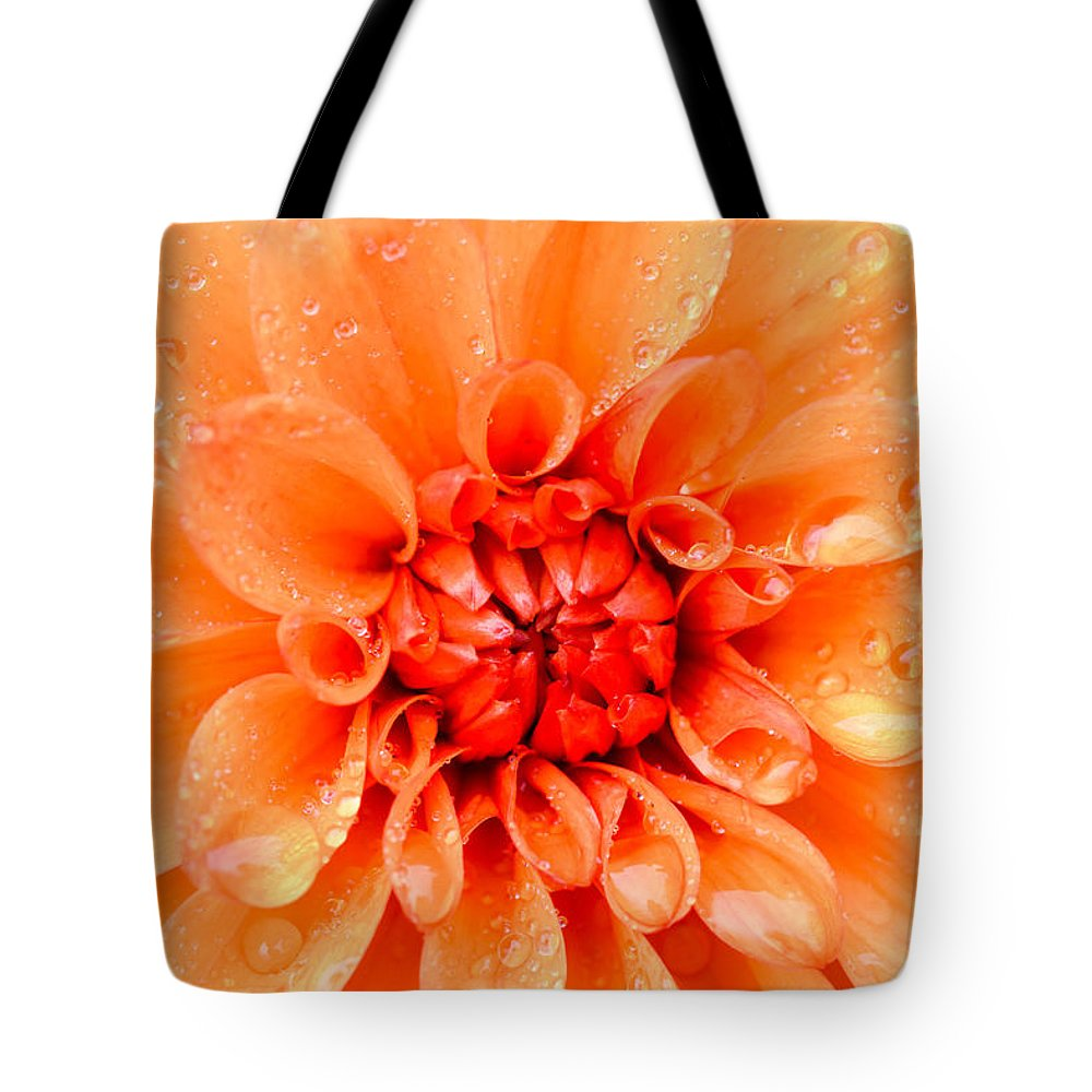 Bright Tote Bag featuring the photograph Raindrops In Spring by Mary Moore