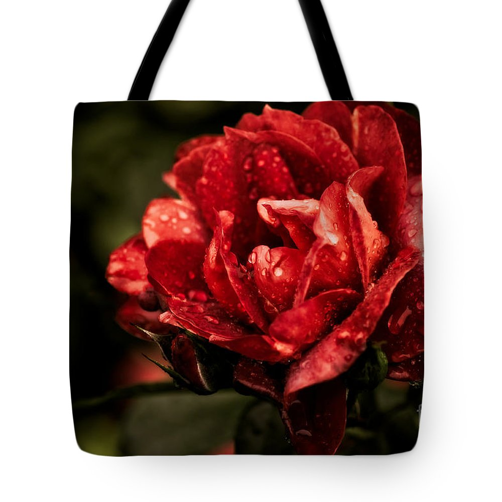 Botanical Tote Bag featuring the photograph Rainkissed by Venetta Archer