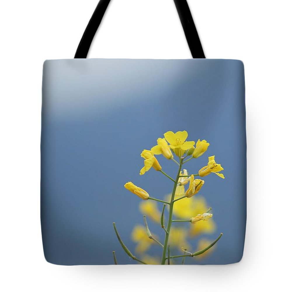Outdoors Tote Bag featuring the photograph Rainy Morning In Spanish Banks by Adam Lee