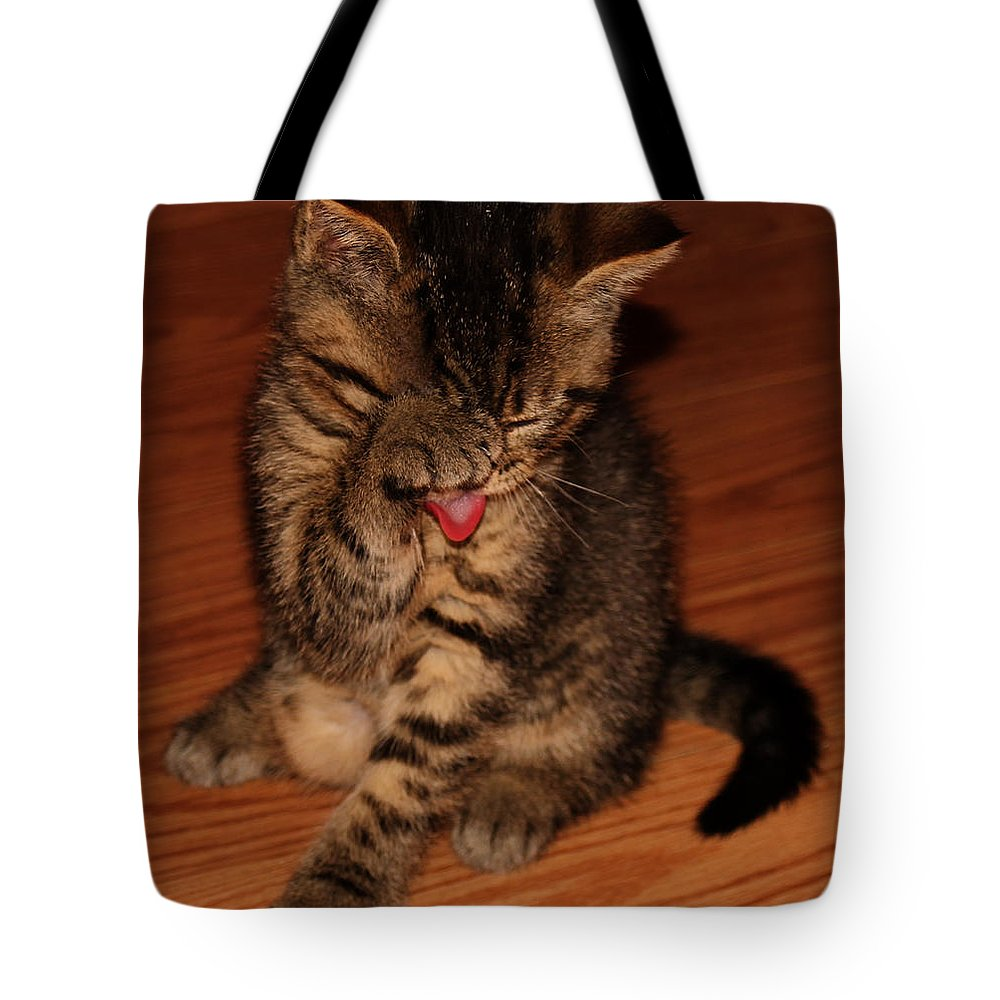 Animals Tote Bag featuring the photograph Ralphie Bathing 2 by Robert Morin