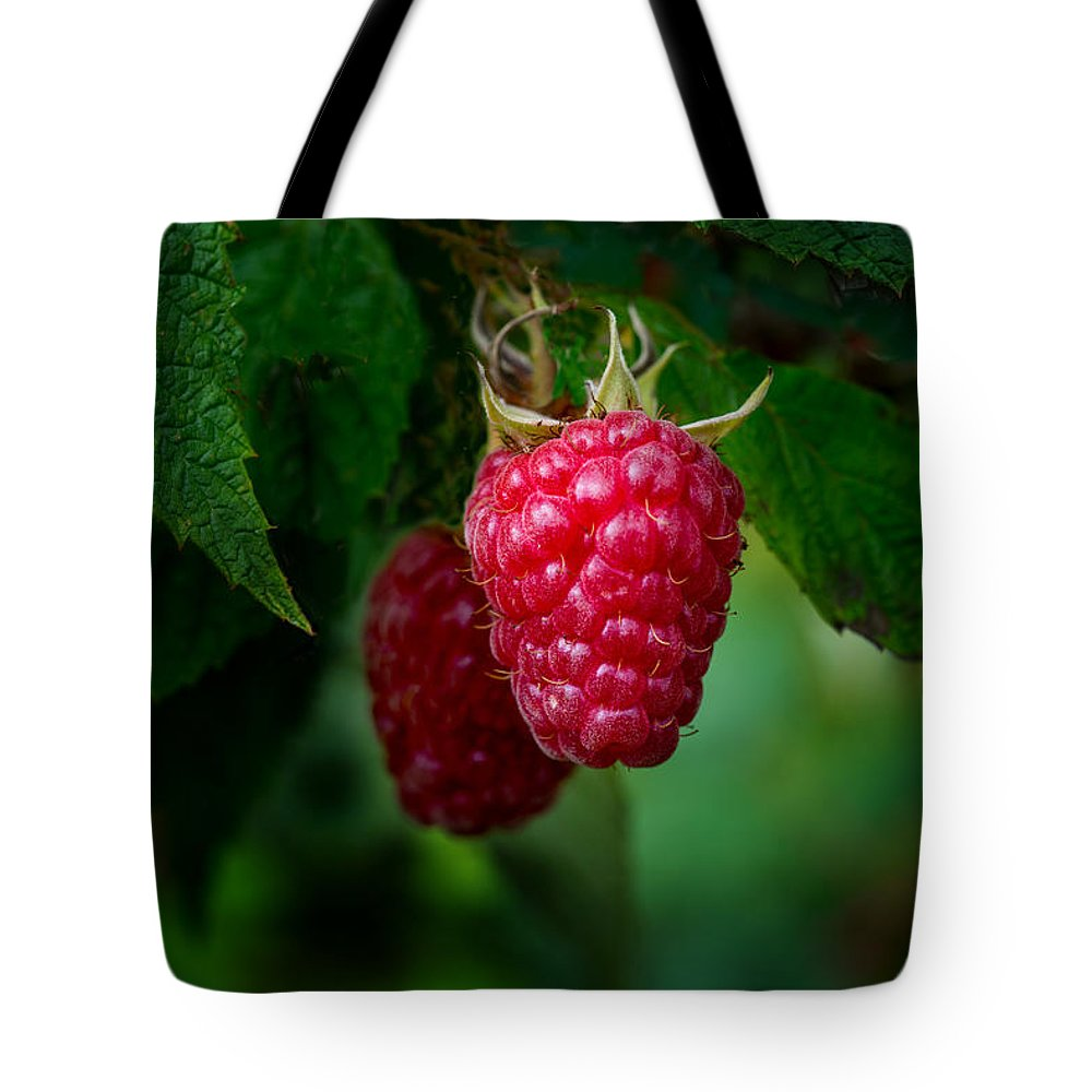 Red Raspberry Tote Bag featuring the photograph Raspberry 1 by Gary LeBouton