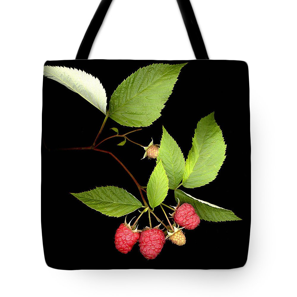 Red Raspberry Tote Bag featuring the photograph Raspberry by Sandi F Hutchins