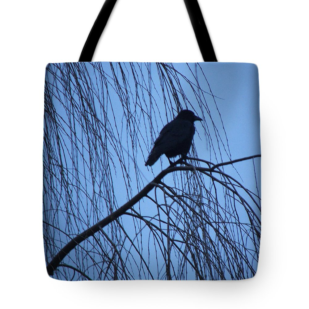 Raven Tote Bag featuring the photograph Raven by Heather Lennox