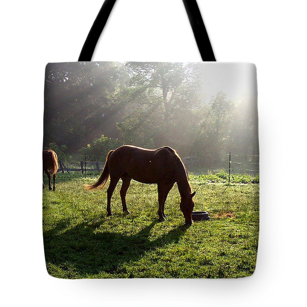 Gandert Tote Bag featuring the photograph Rays From Heaven by Jenny Gandert