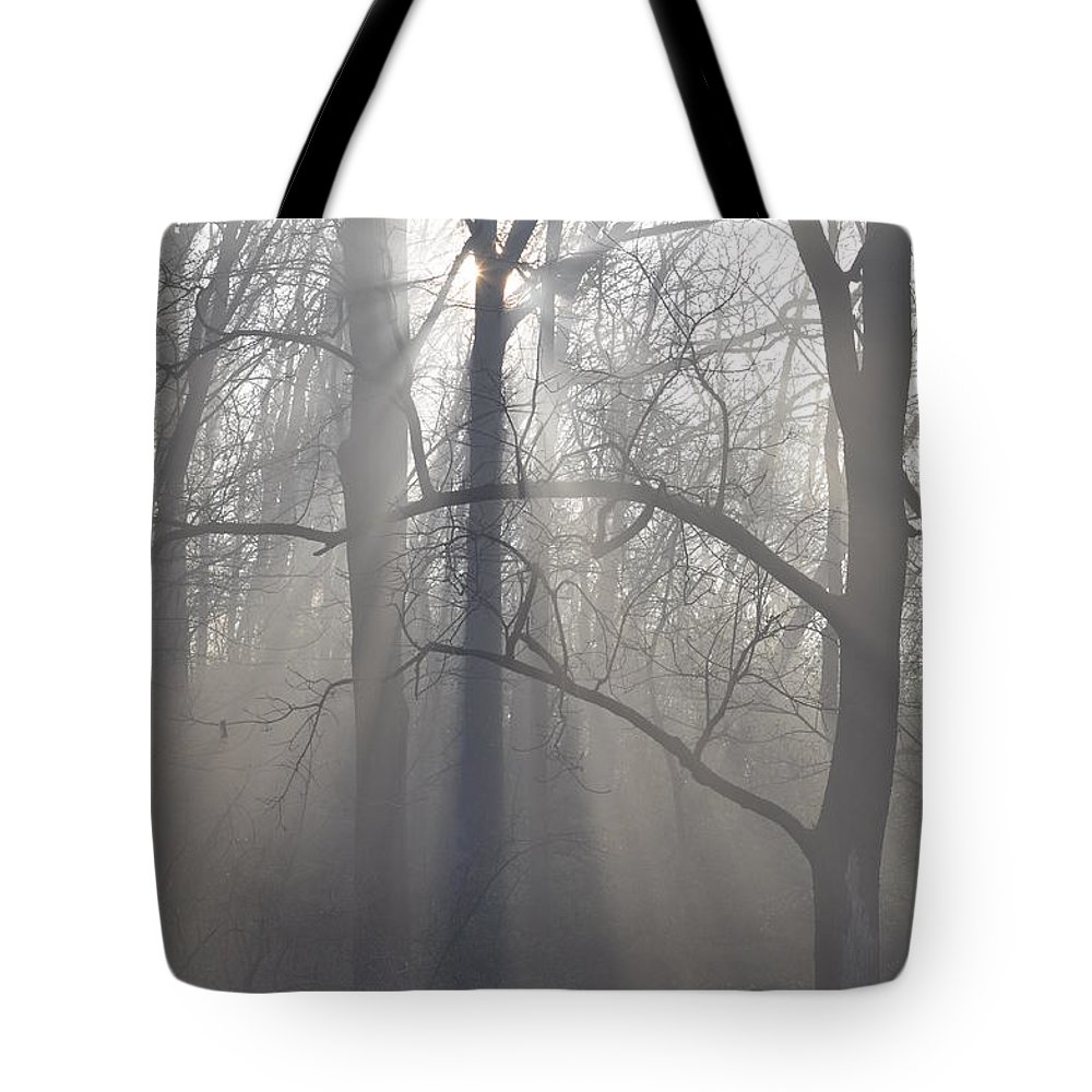 Malvern Tote Bag featuring the photograph Rays Of Hope by Bill Cannon