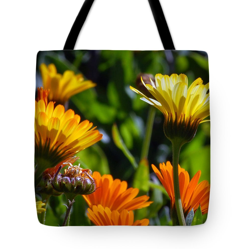 Flower Tote Bag featuring the photograph Reach For The Sun 1 by Amy Fose