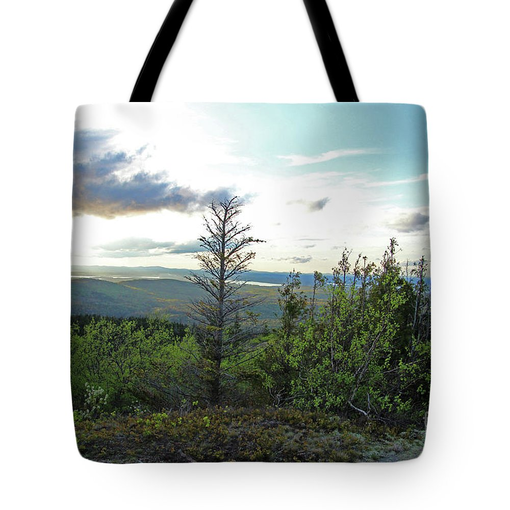 Landscape Tote Bag featuring the photograph Reach To The Sky by Nicole Engelhardt