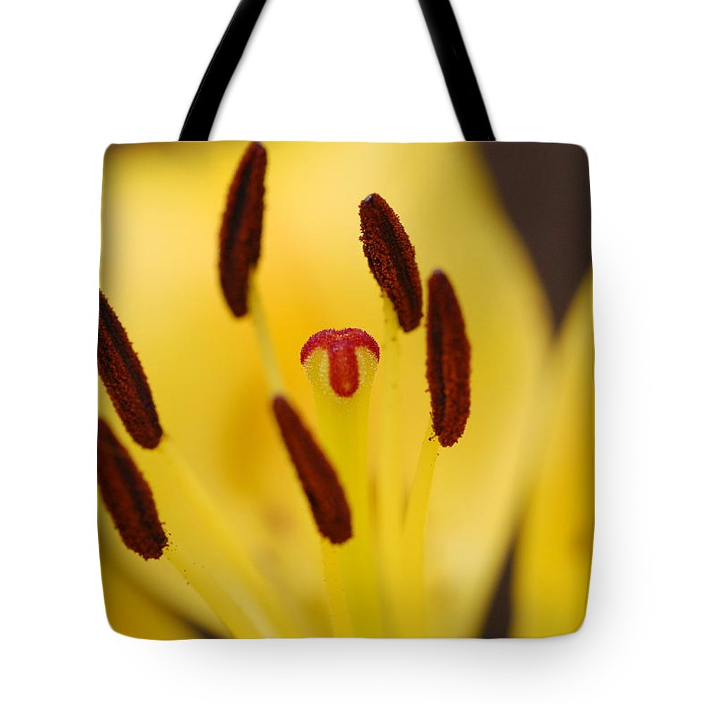 Flower Tote Bag featuring the photograph Reaching by Amy Fose