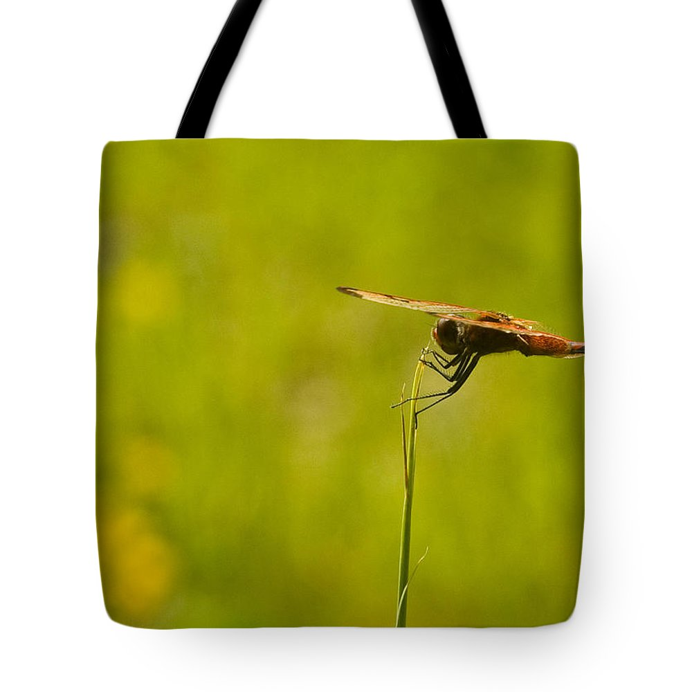 Dragonfly Tote Bag featuring the photograph Ready For Flight by Douglas Barnett