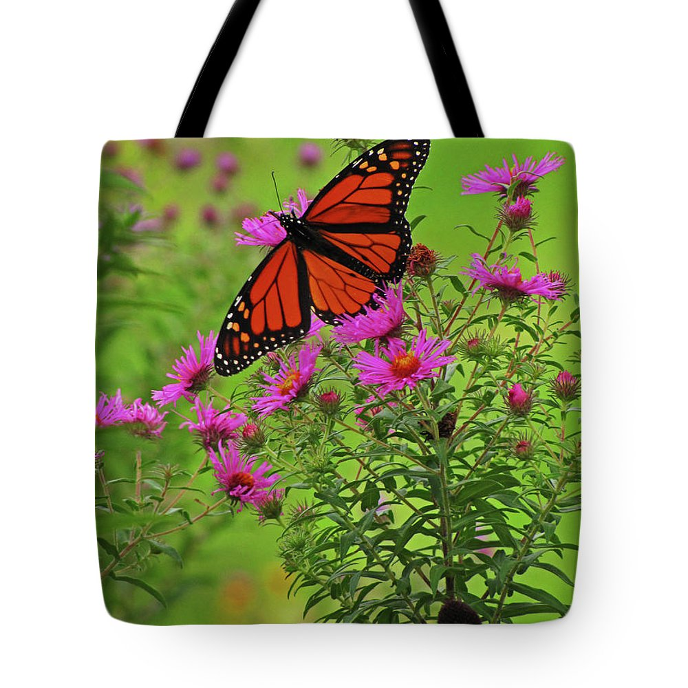 Monarch Tote Bag featuring the photograph Ready For Flight by Jessica Killingbeck