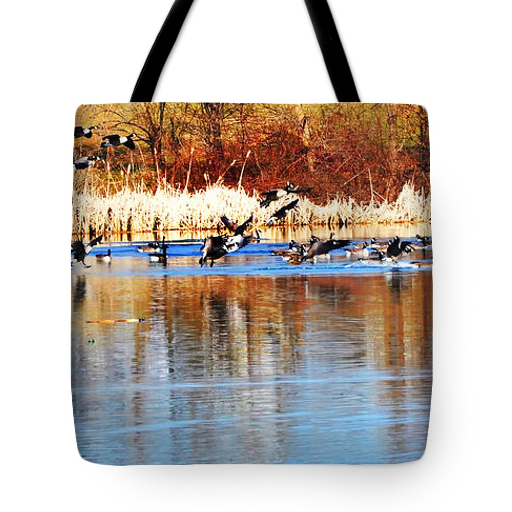Birds Tote Bag featuring the photograph Ready Get Set Go by Bill Cannon
