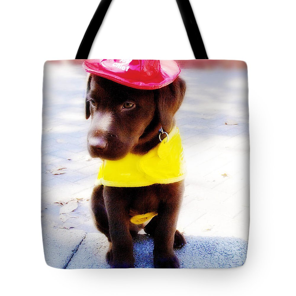 Dog Tote Bag featuring the photograph Fire Pup Ready To Roll by Toni Hopper