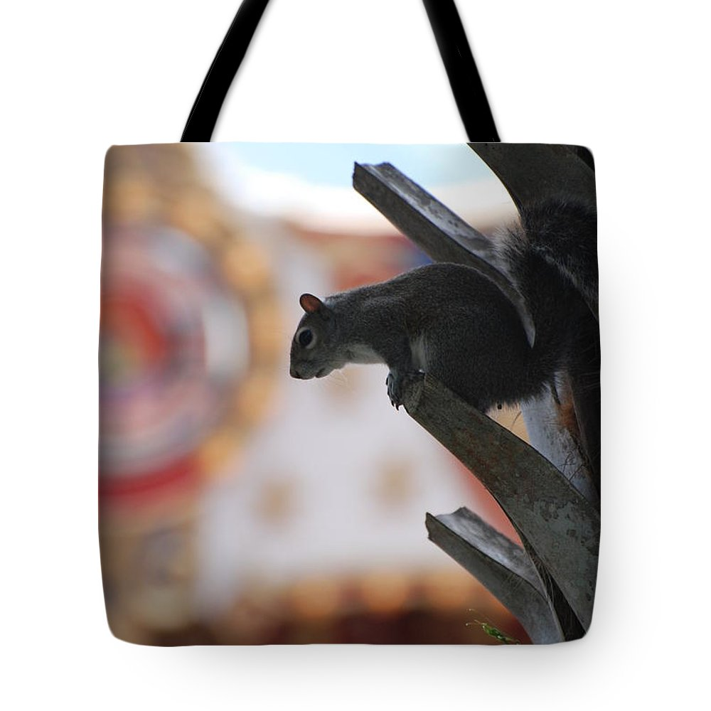 Squirrel Tote Bag featuring the photograph Ready To Jump by Rob Hans