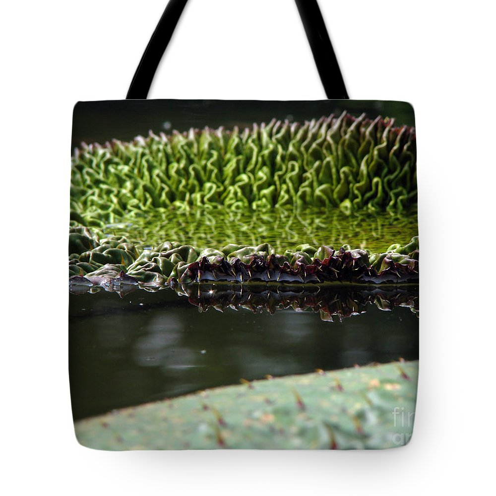Lillypad Tote Bag featuring the photograph Ready To Spread by Amanda Barcon