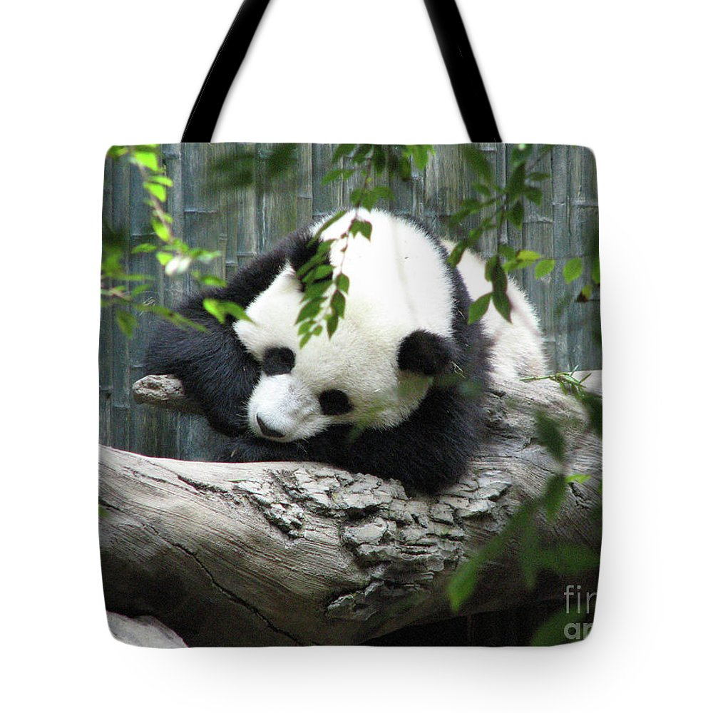 Panda Tote Bag featuring the photograph Really Cute Panda Bear Sleeping On A Log by DejaVu Designs