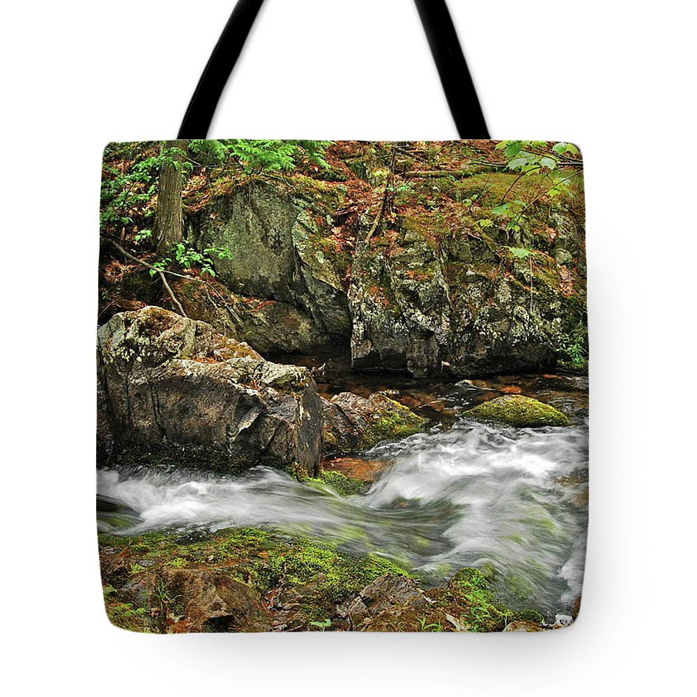 Reany Falls Tote Bag featuring the photograph Reany Falls 4 by Michael Peychich