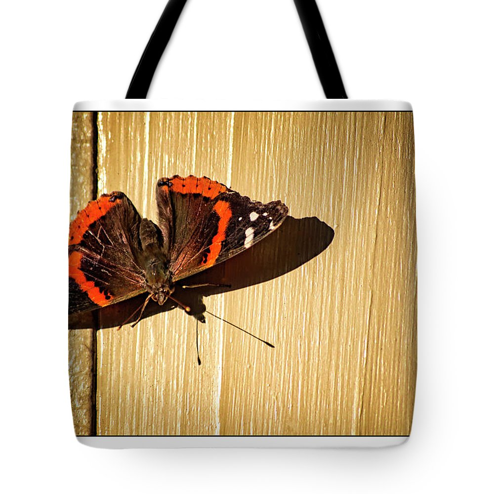 Red Admiral Tote Bag featuring the photograph Red Admiral by Marshall Barth