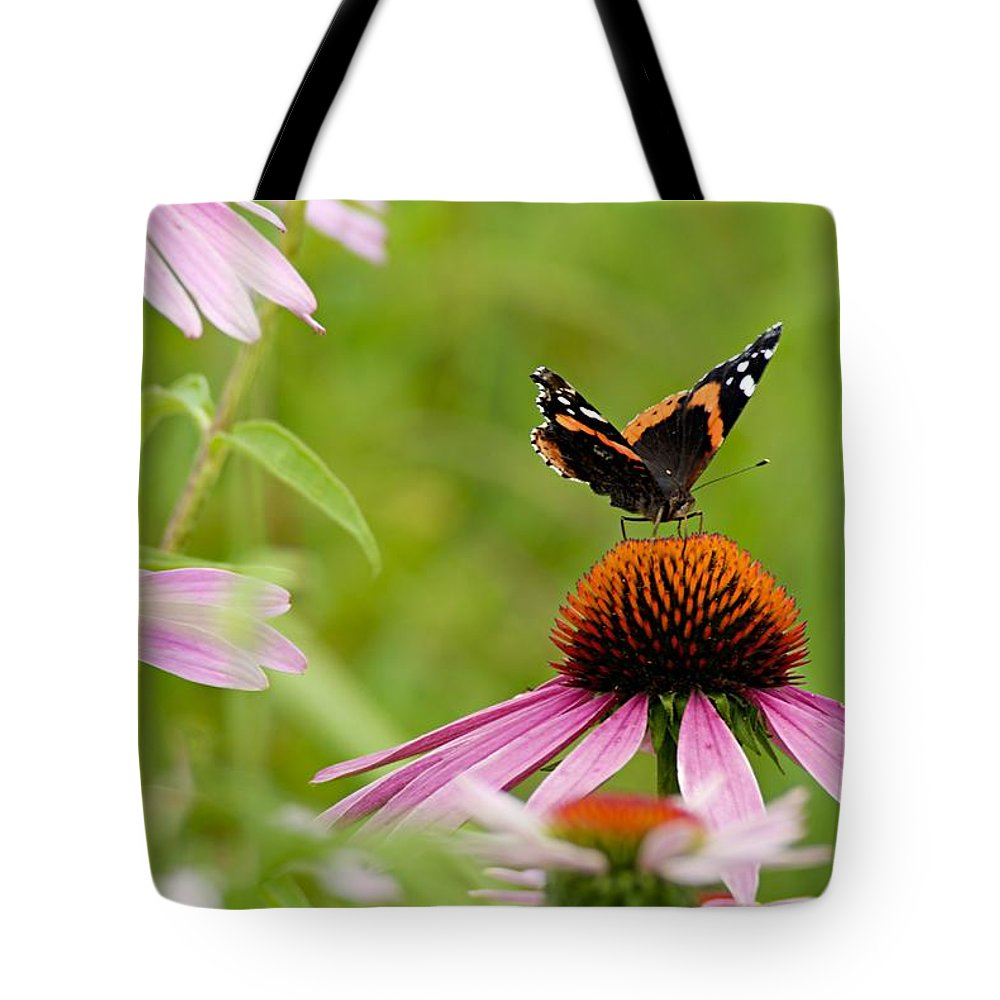 Red Admiral Tote Bag featuring the photograph Red Admiral On Cone Flower by Larry Ricker