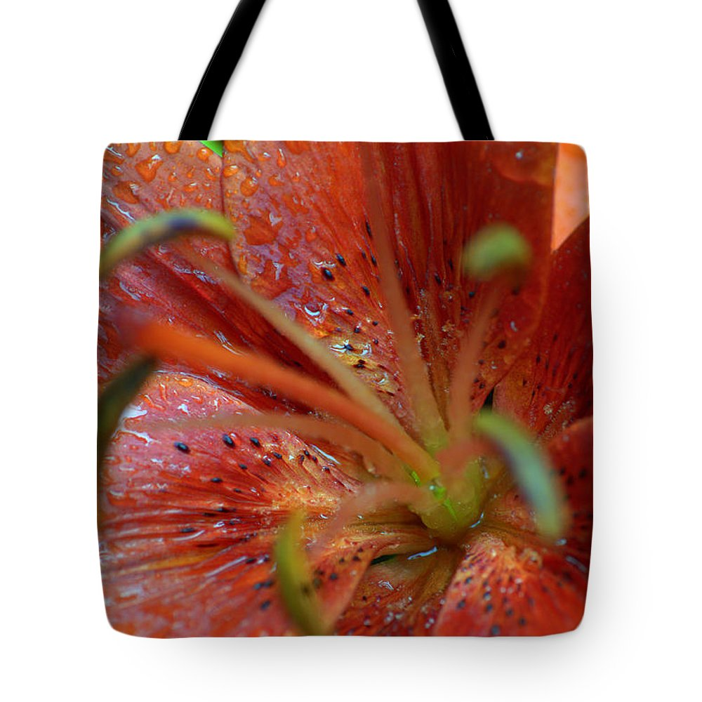 Tote Bag featuring the photograph Red And Green by Edward Dunncan