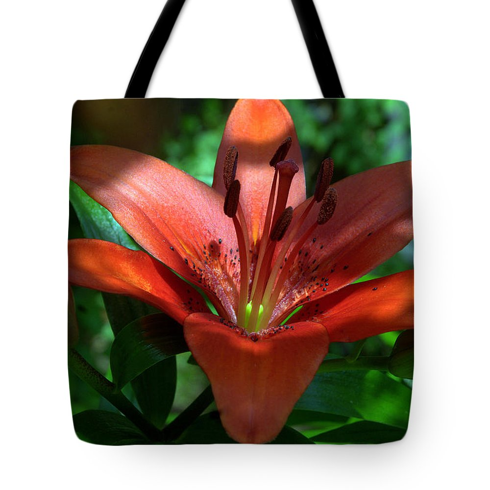 Tote Bag featuring the photograph Red And Green No. 2 by Edward Dunncan