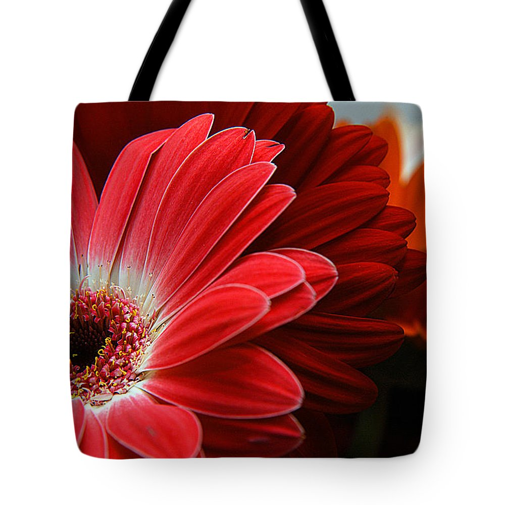 Clay Tote Bag featuring the photograph Red And Orange Florals by Clayton Bruster