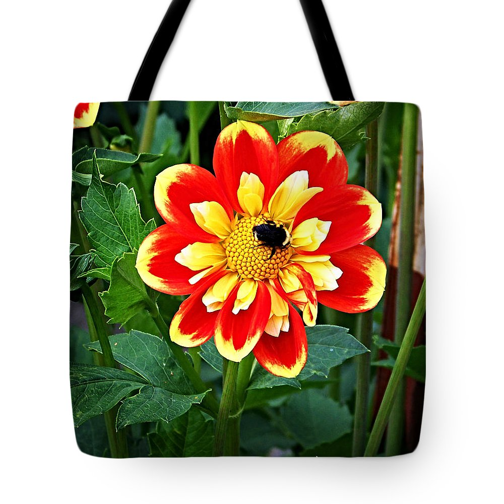 Flower Tote Bag featuring the photograph Red And Yellow Flower With Bee by Anthony Jones