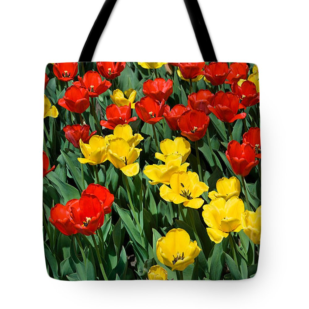 Red Tote Bag featuring the photograph Red And Yellow Tulips Naperville Illinois by Michael Bessler