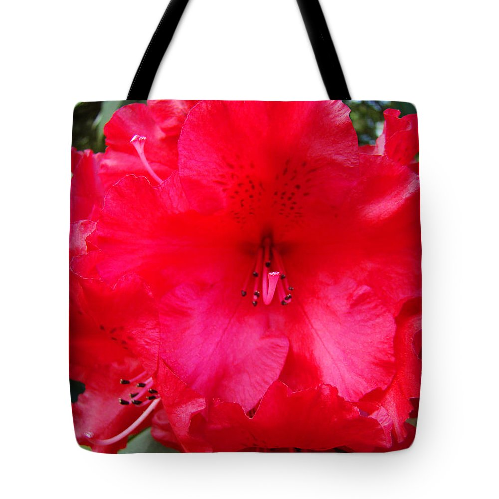 �azaleas Artwork� Tote Bag featuring the photograph Red Azaleas Flowers 4 Red Azalea Garden Giclee Art Prints Baslee Troutman by Baslee Troutman