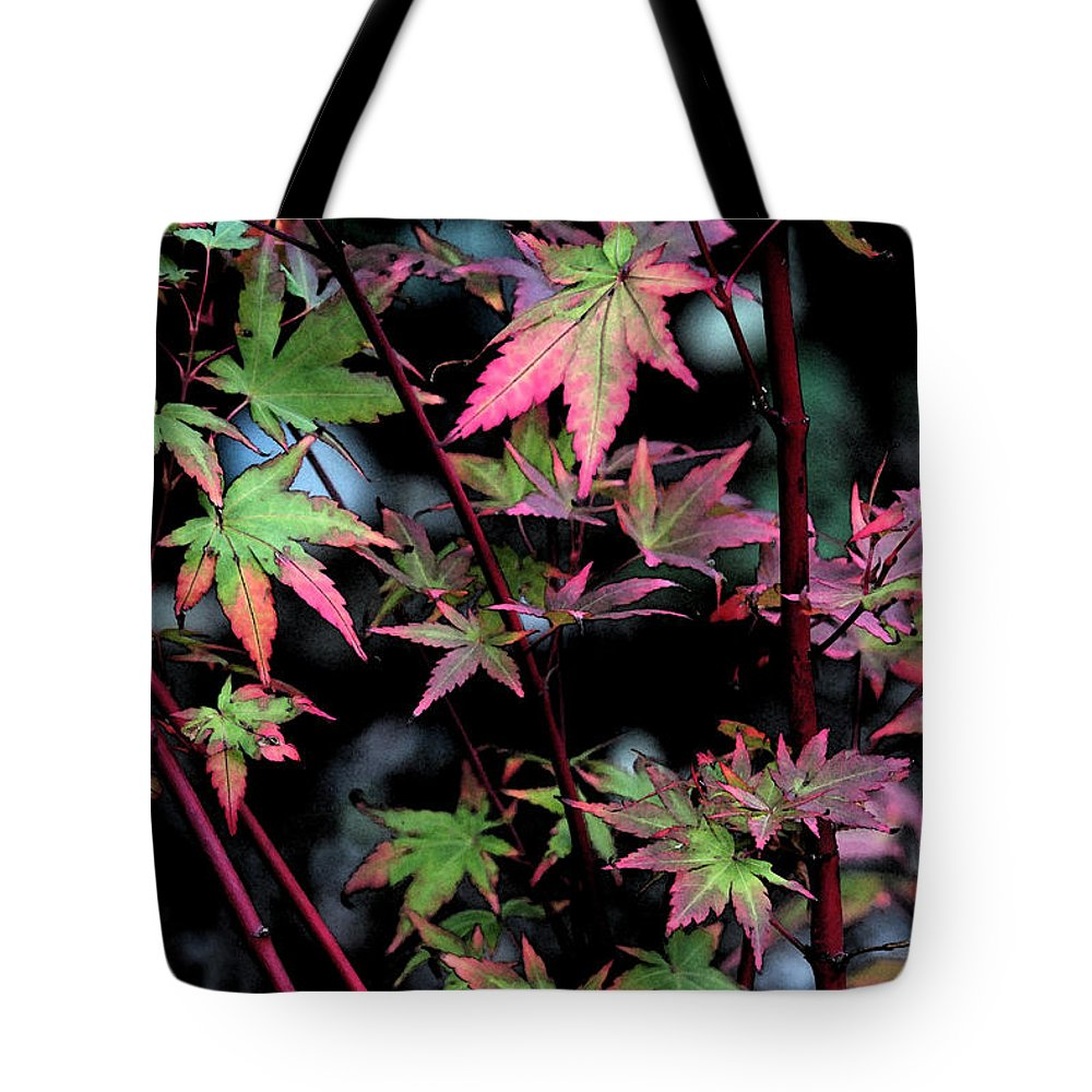 Red Tote Bag featuring the photograph Red Bark Maple by Carol Eliassen