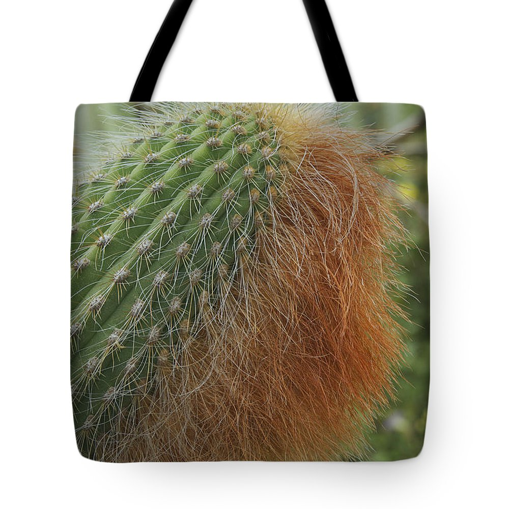 Landscape Tote Bag featuring the photograph Red Beard by Michael Peychich